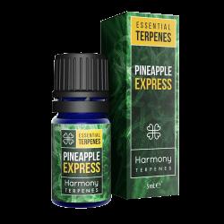 Terpène PINEAPPLE EXPRESS 5ml